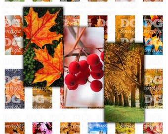 Autumn Leaves Trees 1x2 Domino Digital Collage Sheet for pendants, jewelry making, scrapbooking and mixed media, Instant Download