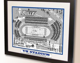 UB Stadium Art, home of the University of Buffalo Bulls