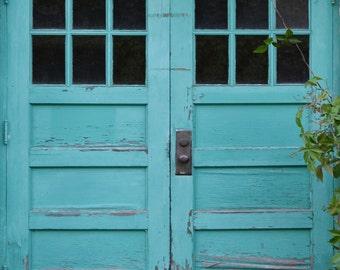 Photography Backdrop - Robin Egg Blue Doors backdrop - Vintage door photo backdrop - Distressed blue doors printed backdrop