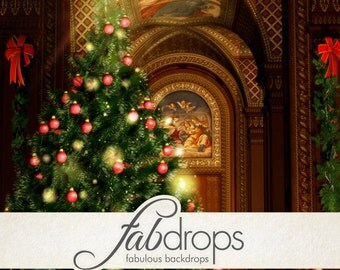 Christmas Photography Backdrop - Photo Background Is Perfect For Holiday Christmas Photoshoots (FD9012)