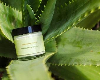 Natural Sunscreen Face Lotion, Sun Protection and Moisturiser, Organic Sunscreen, Natural Sunscreen, Non nano Zinc Oxide