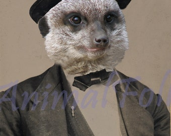 NO MEER GENTLEMAN meerkat Art digital Mixed Media Collage Print anthropomorphic Victorian steampunk Altered Antique Photograph fashion