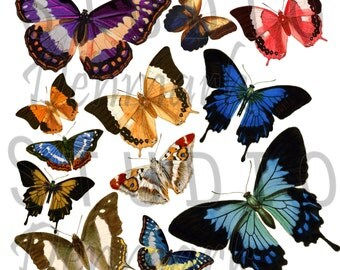 Vintage Butterflies Clipart Set - 12 png Butterflies - Commercial Use - Instant Download