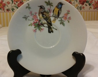 """Two """"Spring Floral"""" Bird Saucers Fine China @ 1976 by Enesco Made in Japan"""