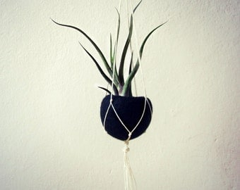 Macrame hanger planter / Hanging planter / Black Felt planter / minimalist home decor / air plant vase / Choose your color!