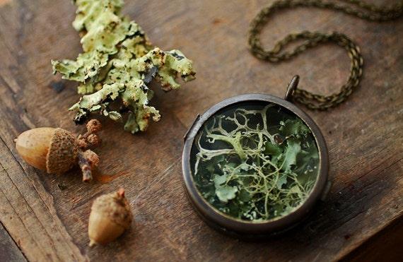 Irish lichen necklace , terrarium locket pendant , living locket , real plant specimen , Irish moss terrarium , nature inspired #C6