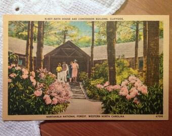 Vintage Postcard, Cliffside, Nantahala National Forest, North Carolina - 1940s Linen Paper Ephemera