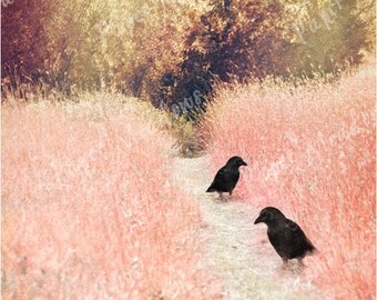 Black Bird Fairy Tale Landscape Download, Crow Print, Photo Collage, Raven, Pink Meadow, Blackbird Photo, Printable Crow, Digital Bird Image