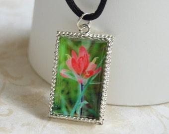 Indian Paintbrush Wildflower Photo Pendant