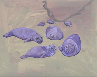 Seals sea lions beach portrait purple blubber nature painting