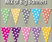 Printable PDF Big Banner Color Mix Party Pack pinks, yellows, purples, orange, blue, gray, green Large Skinny banner making supplies bunting