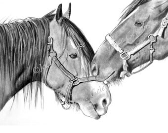 Nuzzling Draft Horses: Pencil Drawing, Printable Art WHOA Team, INSTANT DOWNLOAD