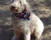 Denver Broncos (or Your Favorite Team) Dog Bandanna