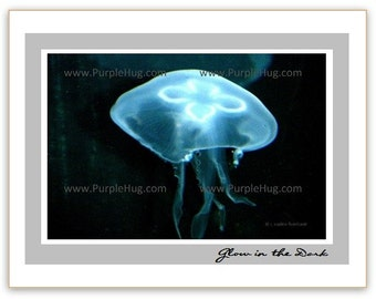 Photo Notecard, choose 1 - Jellyfish glowing or Bee with flowers- print mounted on note card - nature photography art - valentines gift