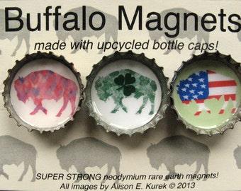 Buffalo Magnets - Packaged Gift Set of 3 - Bottle Cap Magnets - Holiday Buffalos - Buffalo Gift