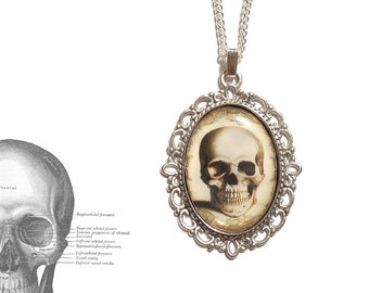 Human anatomy skull necklace gothic pendant - cameo resin gothic goth steampunk