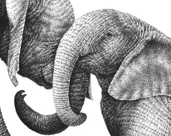7x5 Giclee Print of Young African Elephants, Wildlife Art Gift, Animal Black and White, Picture, Wall Art Print