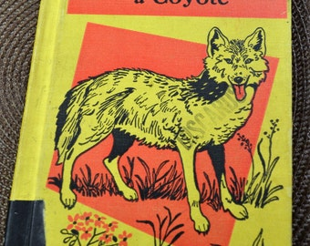Vintage Children's Book Once There Was a Coyote by Dolch