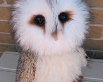 BARN OWL - Lifesize artist Bear soft sculpture e Pattern