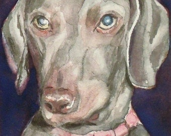 "Original ACEO Watercolor Painting - Animals Dogs - Weimaraner - 2 1/2"" x 3 1/2"" - Artist Trading Cards - Art Cards - Fine Art"
