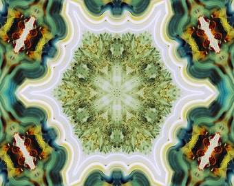 Petrified Wood Mandala Photograph 10x10 psychedelic kaleidoscope trippy pattern green teal vibrant colorful wall art decor cream