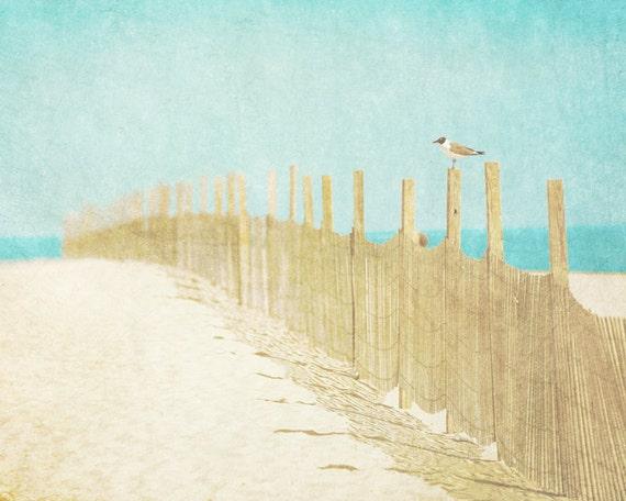 Beach photography, pastels, pale blue, sand, beige, seagull, driftwood, neutral decor, nautical art, seaside holiday, ocean blue, dreamy