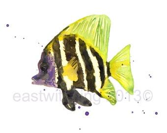 FISH Art, tropical fish, beach house decor, funny art, stripes, fish print