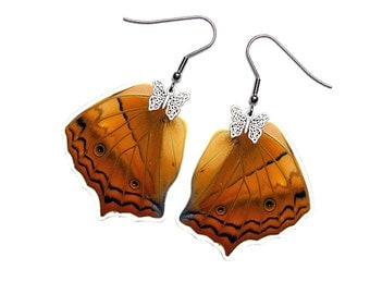 Real Butterfly Wing Earrings (Vindula Hindwing - E038)