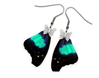 Real Butterfly Wing Earrings (Doxocopa Cherubina Forewing - E171)