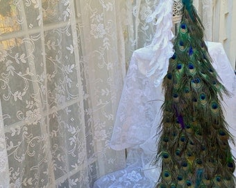Winning FOUR WEDDINGS 48 inch Exquisite Peacock AND18 inch White Bride