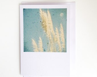 Breeze - Floral Blank Greetings Card for Her