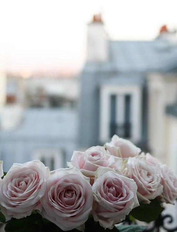 Paris Photography, Paris Apartment, Pink Roses on the Paris Balcony, Montmartre Rooftops, Spring in Paris, baby blue