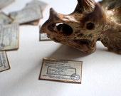 Miniature Sign --- Museum Placard