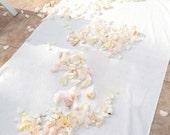 Aisle Runner, Wedding Aisle Runner, *Clearance*, White 10 Feet Long Quality Fabric Runner That Won't Rip or Tear