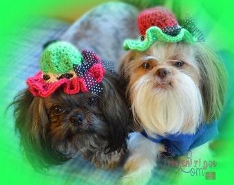 WATERMELON BONNET Dog hat - Cat hat - Humorous - 2 to 20 lb pets -  need measurement