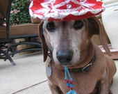 Customizeable Rumba Red Sombrero for cat or dog