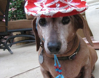 Rumba Red Sombrero for cat or dog - customizeable