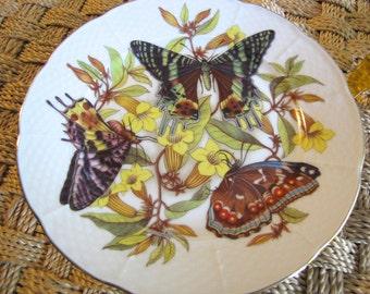 Limoges Butterflies & Flowers Plate - Hand Painted Email De  Limoges L. Godinger  Floral Collector Plate