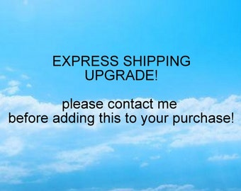 EXPRESS SHIPPING Special Request listing shipping upgrade