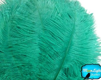 """USA Ostrich Suppliers, 10 Pieces - 6-8"""" AQUA GREEN Ostrich Dyed Drabs Feathers : 1364"""