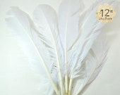6pcs Turkey Wing Feathers both Right and Left wing, WHITE - premium crafts and millinery supply