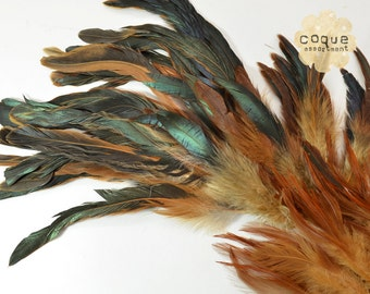 120pcs+- Rooster Coque Feathers Assortment, sadle, schlappen, and tail, three different types of rooster feathers- BROWN