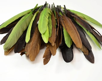 Middling Duck Quills, Stiff loose feathers - Earth Tones (20pcs)