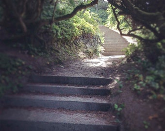 pathway...yaquina bay, ca. - digital print