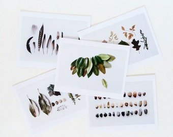PHOTO CARDS blank inside. Set of 5 with envelopes. Nature collection. Gift set. Stationery