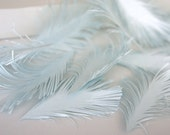 Light Blue Feathers, handmade of paper - set of 25
