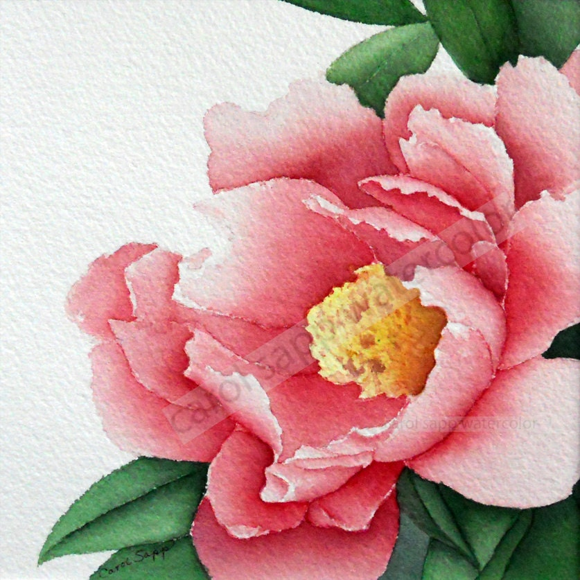 Watercolor Flower Painting: Rose Peony Watercolor Flower Painting 12 X 12