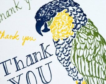Letterpress Thank You Card - Parrot