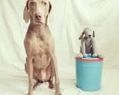 Pet Replica: Large Version