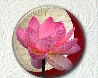Pocket Mirror, Floral Mirror, Pink Floral Mirror,  Buy 3 Get 1 Free 441